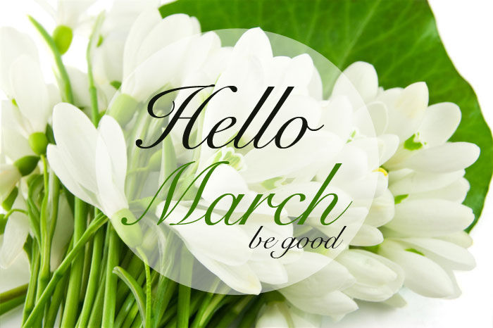 Great Goodbye February, Hello March!