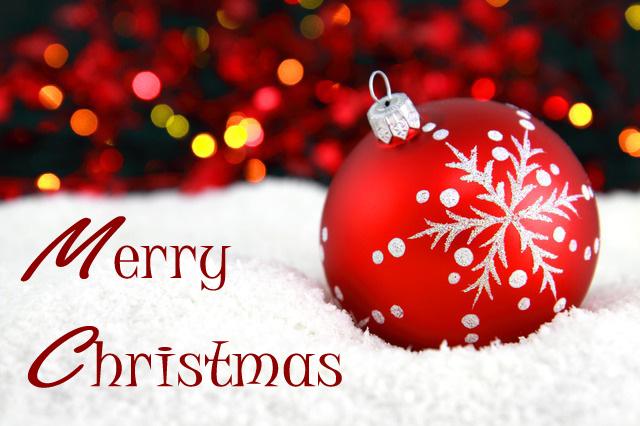 merry christmas to you stephanie daily